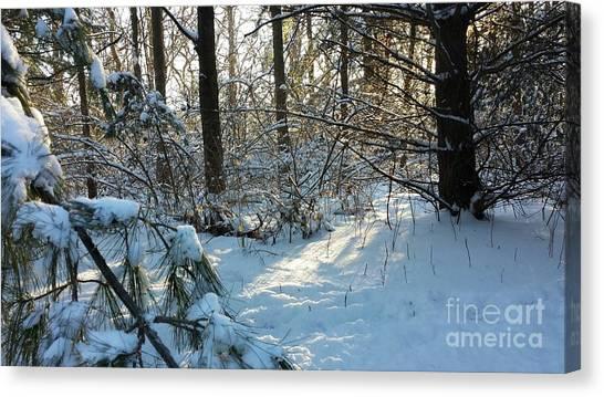 Come Warmth Of Winter's Sun Canvas Print