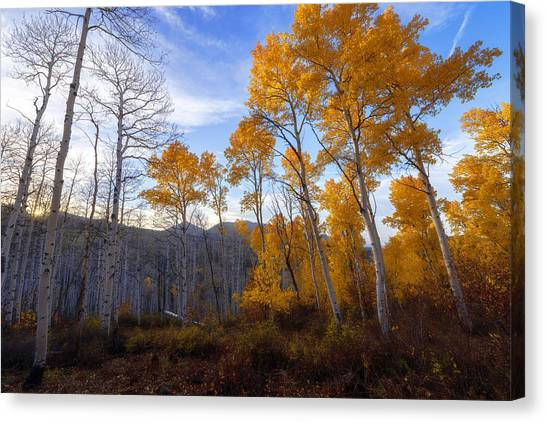 Wasatch Mountains Canvas Print - Comparison by Chad Dutson