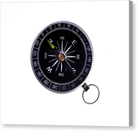 One Direction Canvas Print - Compass by Cordelia Molloy