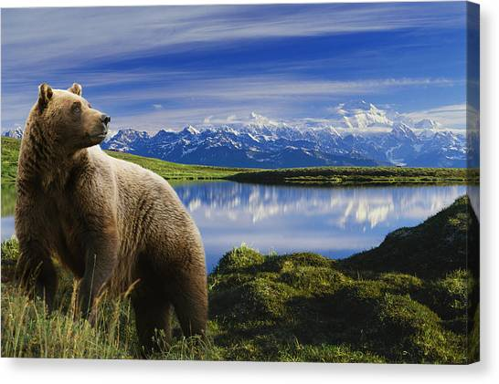 Bear Lake Canvas Print - Composite Grizzly Stands In Front Of by Michael Jones