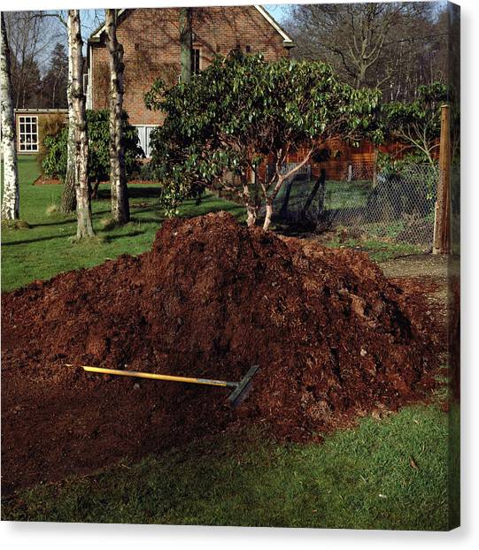 67 Canvas Print - Compost Heap by Science Photo Library