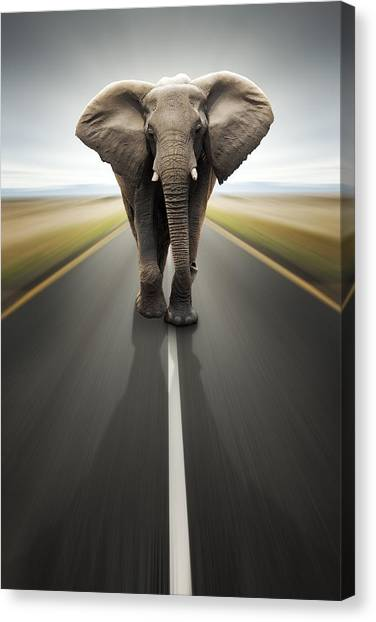 Weights Canvas Print - Heavy Duty Transport / Travel By Road by Johan Swanepoel