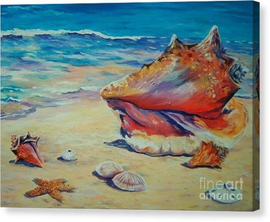 Conch Shells Canvas Print - Conch Shell by John Clark