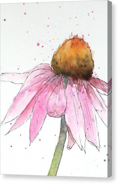 Coneflower 1 Canvas Print