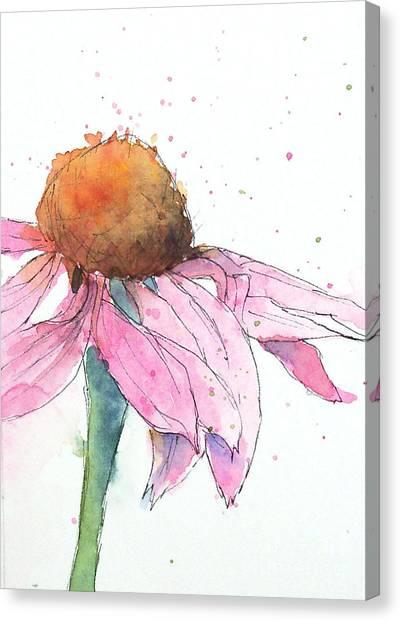 Coneflower 2 Canvas Print