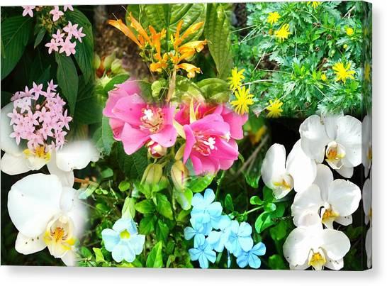 Confluent Flowers 12 Canvas Print