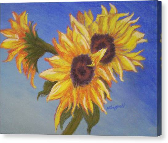 Connies Sunflowers Canvas Print