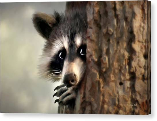 Raccoons Canvas Print - Conspicuous Bandit by Christina Rollo