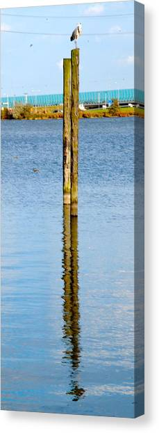 Contemplation Canvas Print by Karen Weetman