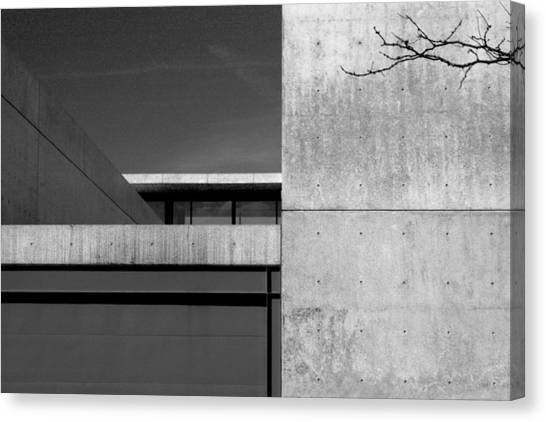 Contemporary Concrete Block Architecture Tree Canvas Print
