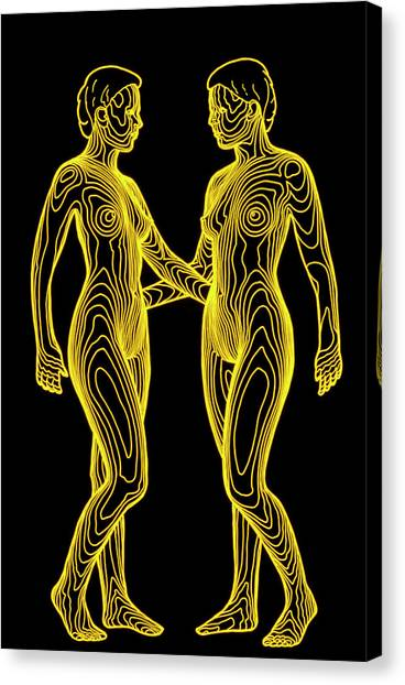 Contour Map Of Identical Female Twins Face To Face Canvas Print by Dr Robin Williams/science Photo Library