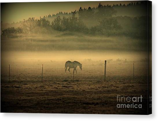 Contours Of Morning Canvas Print