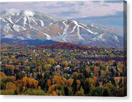 Contrast Of Seasons Canvas Print