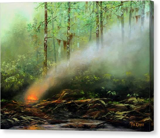 Deforestation Canvas Print - Controlled Burn by Tim Davis