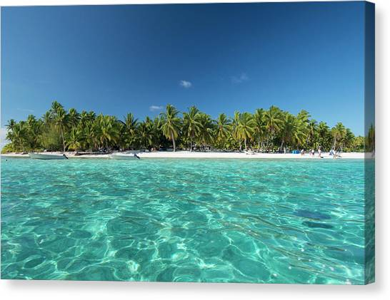 Cook Islands Palmerston Island Canvas Print by Cindy Miller Hopkins