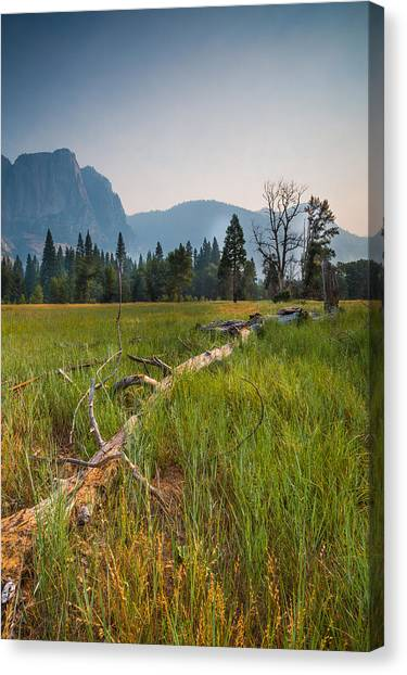 Cook's Meadow Canvas Print