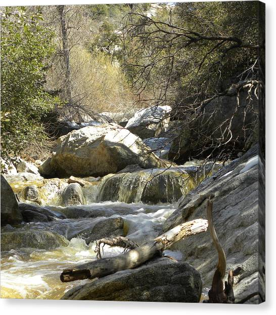 Canvas Print - Cool Cool Water by John Wilson