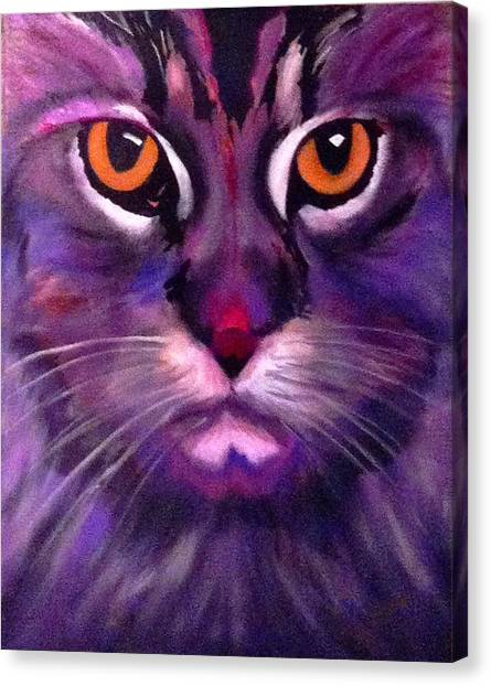 Cool Maine Coon Canvas Print
