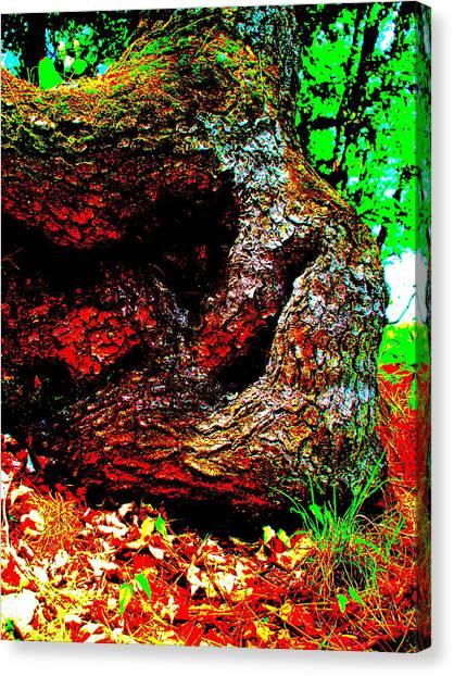 Coos Canyon 228 Canvas Print