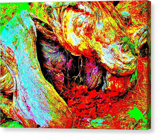 Coos Canyon 230 Canvas Print