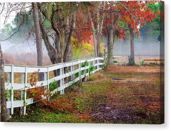 Coosaw Horse Fence Canvas Print