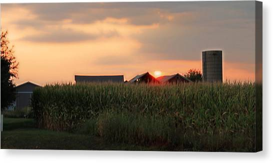 Coountry Sunset Canvas Print by Victoria Sheldon