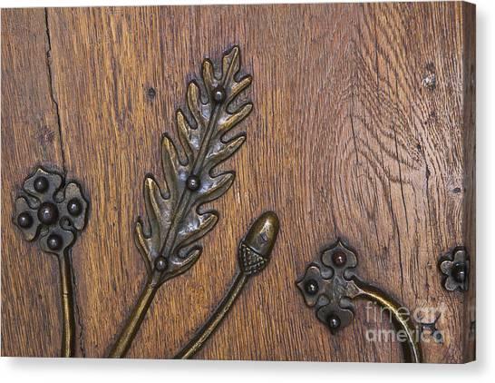 Copper Oak Canvas Print