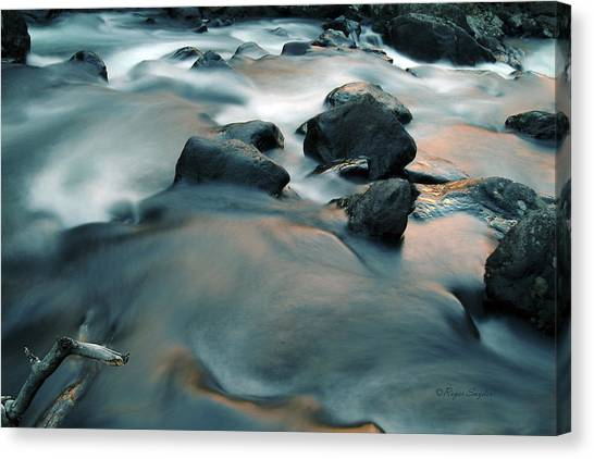 Copper Stream 1 Canvas Print