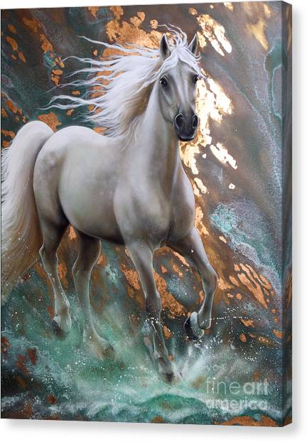 Copper Sundancer - Horse Canvas Print