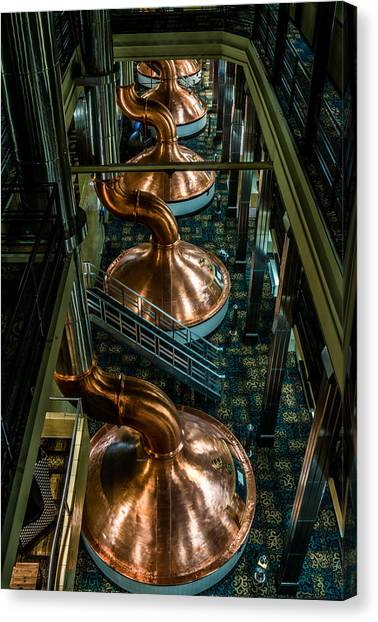 Copper Tops Canvas Print