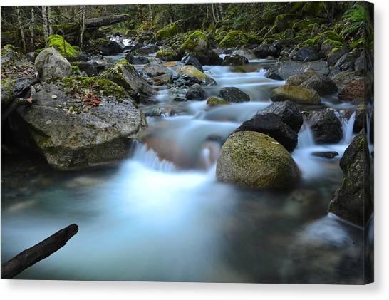 Randy Moss Canvas Print - Coquihalla River 2 by Randy Giesbrecht