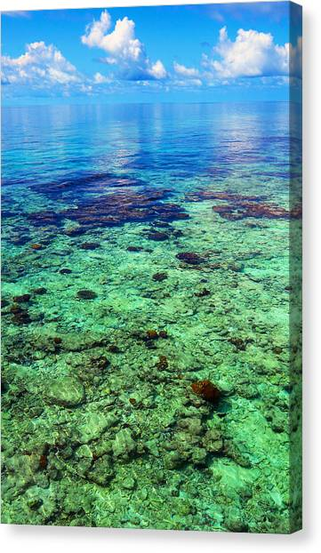 Coral Reef Near The Island At Peaceful Day. Maldives Canvas Print