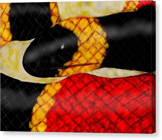 Coral Snakes Canvas Print - Coral Snake  by Mathieu Lalonde