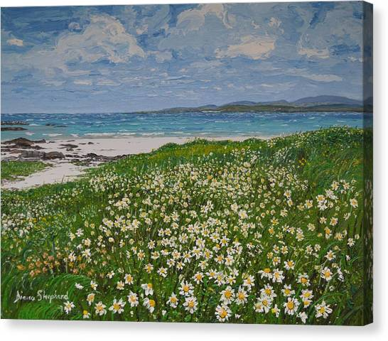 Coral Strand On A Windy Day Connemara Canvas Print