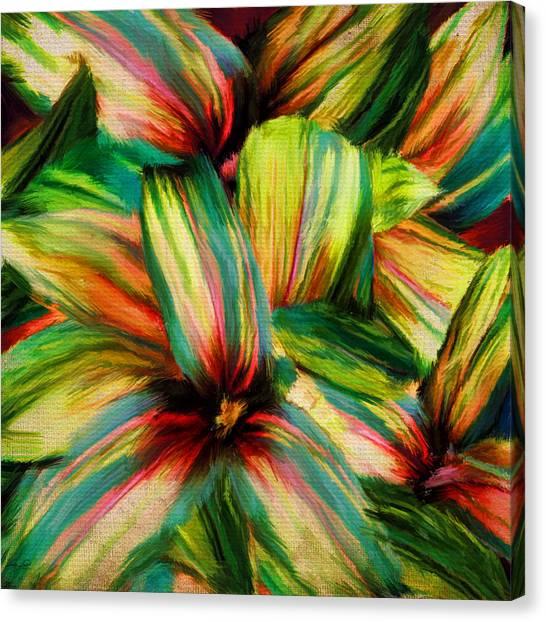 Tropical Rainforests Canvas Print - Cordyline by Lourry Legarde