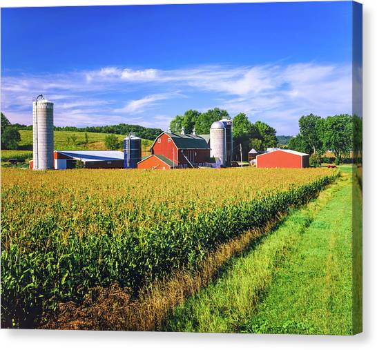 Corn Crop And Iowa Farm At Harvest Time Canvas Print by Ron thomas