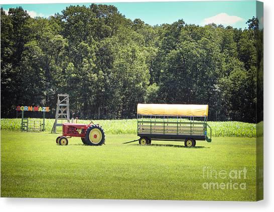 Corn Maze Canvas Print - Corn Maze by Colleen Kammerer