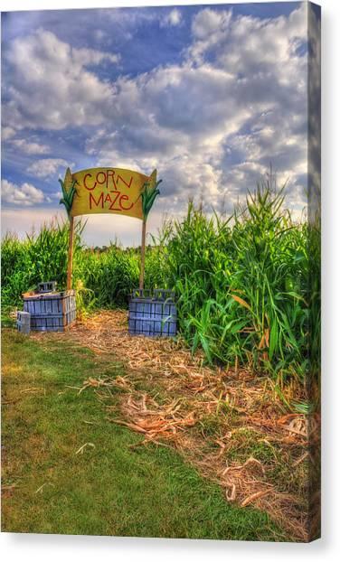 Corn Maze Canvas Print - Corn Maze by Joann Vitali