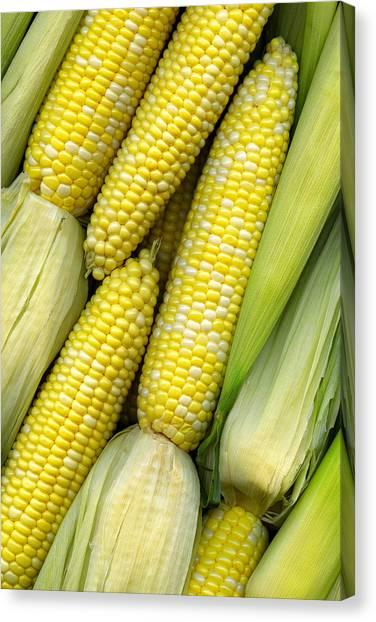 Roast Canvas Print - Corn On The Cob II by Tom Mc Nemar