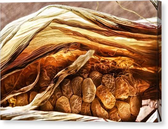 Vegetable Garden Canvas Print - Corn Roast by Susan Capuano