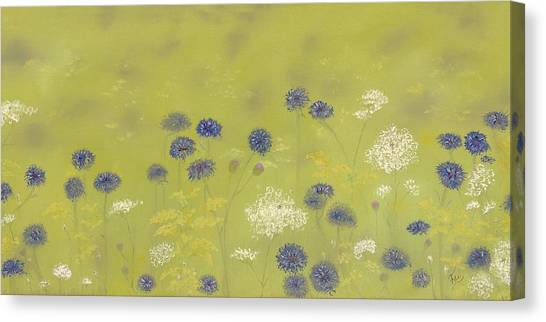 Cornflowers And Queen Anne's Lace Canvas Print