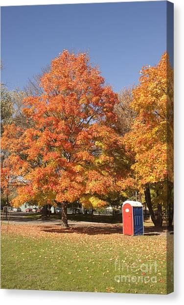 Corning Fall Foliage - 4 Canvas Print
