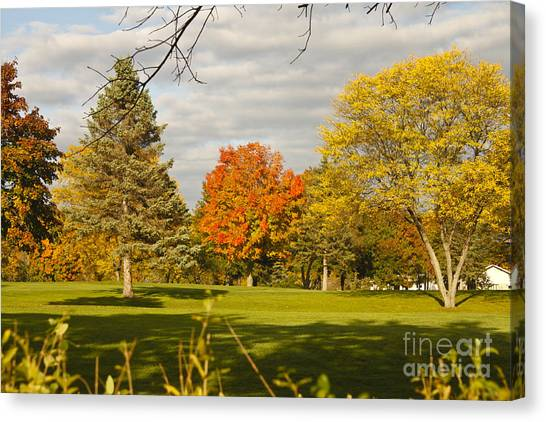 Corning Fall Foliage 5 Canvas Print