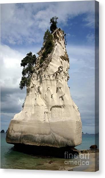 Coromandel Rock Canvas Print