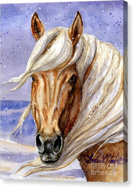 Corona Band Stallion Of Sand Wash Basin Hma Canvas Print