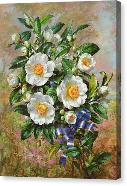 Queen Elizabeth Canvas Print - Coronation Camelia From The Golden Jubilee Series by Albert Williams