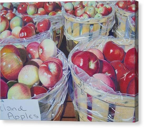 Cortland Apples Canvas Print