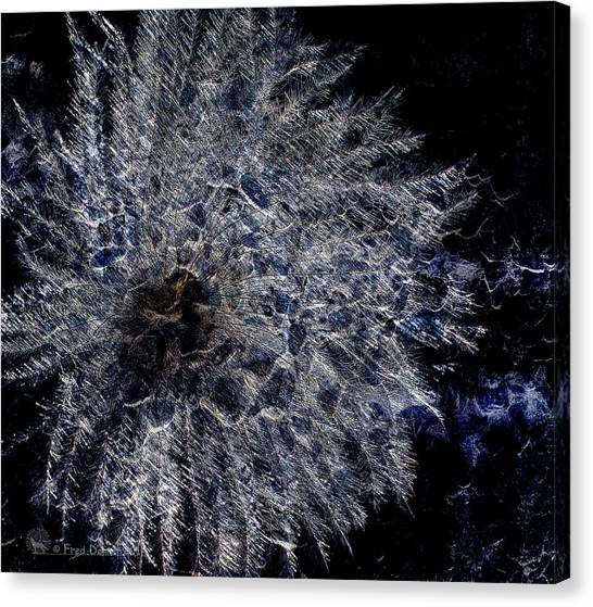 Cosmic Dryas Canvas Print