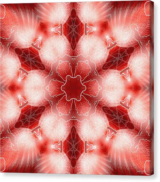 Cosmic Spiral Kaleidoscope 22 Canvas Print