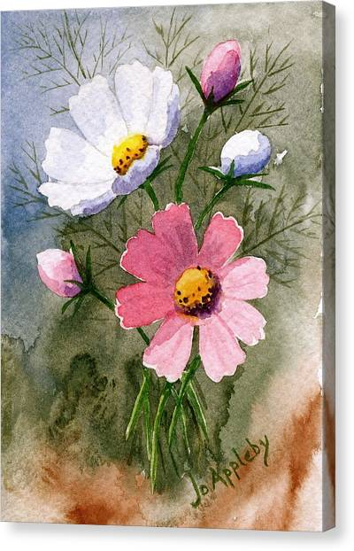 Cosmos Blooms Canvas Print